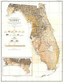 Title/Description: Geologic and Topographic Map of Florida